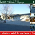 313 Pasture Drive, Carson City, NV